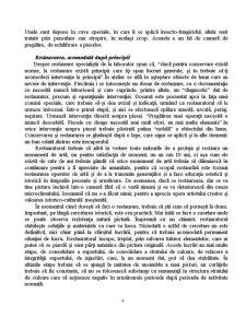 Integrarea Cromatica in Procesul de Restaurare - Pagina 4