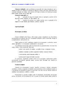 Imobilizări Necorporale - Pagina 4