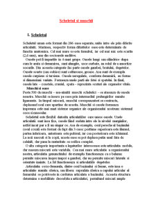 Scheletul si Muschii - Pagina 1