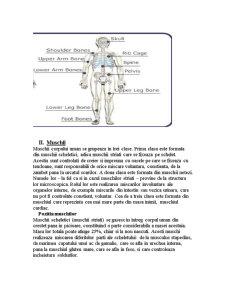 Scheletul si Muschii - Pagina 4