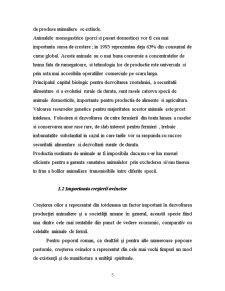 Tehnici de Crestere a Animalelor - Ovine - Pagina 5