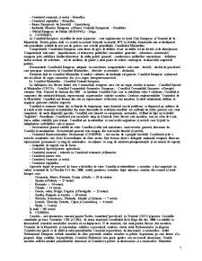 Dreptul Comunitar - Pagina 4