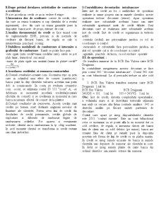 Contabilitatea Institutiilor Bancare - Pagina 2