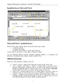 Tehnologii Informaționale Computerizate - Microsoft Word Essentials - Pagina 1