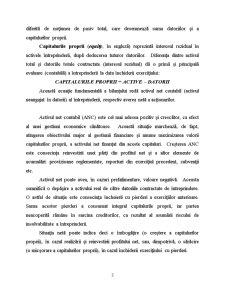 Curs Contabilitate - Pagina 3
