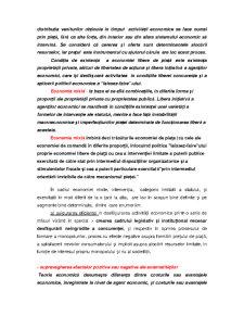 Bazele Economiei de Piata - Pagina 3