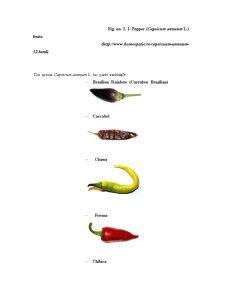 Bolile și Dănătorii Ardeiului - Pagina 3