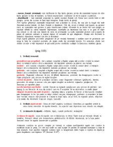 Geomorfologie Subiecte Examen - Pagina 5