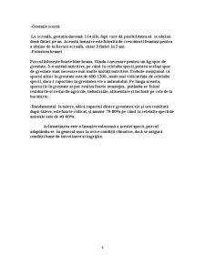 Proiect Tehnologic la Disciplina Tehnologia Cresterii Suinelor - 1500 de Capete - Pagina 4