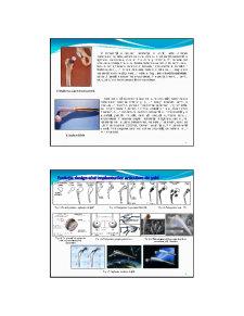 Biomateriale - Pagina 5