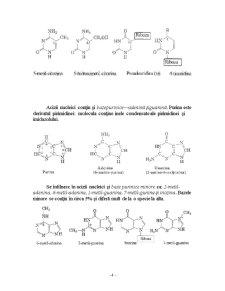 Acizii Nucleici - Pagina 4