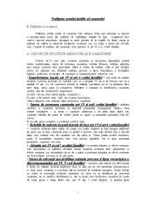 Nulitatea Actului Juridic al Casatoriei - Pagina 1
