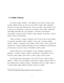 Consiliul Județean - Pagina 2