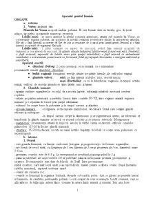 Aparatul Genital Feminin - Pagina 1