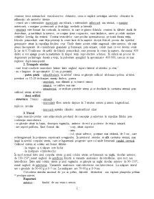 Aparatul Genital Feminin - Pagina 2