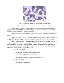 Microorganisme Implicate in Fermentatia Lactica - Aplicatii in Industria Alimentara - Pagina 5