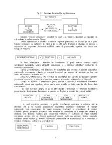 Contabilitate și Analiză Economică - Pagina 2