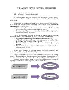 Contabilitatea Grupurilor de Societăți - Pagina 3