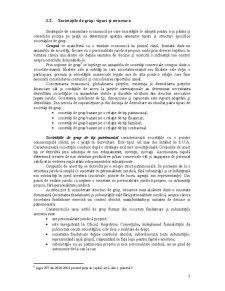 Contabilitatea Grupurilor de Societăți - Pagina 5