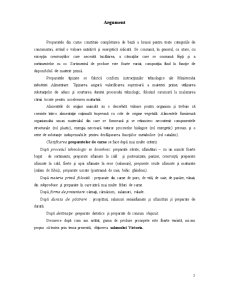 Aspecte Tehnologice privind Obținerea Salamului Victoria - Pagina 3