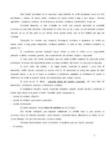 Structura Sistemelor Bancare Contemporane - Pagina 3
