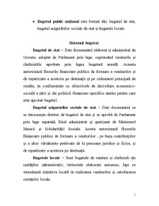 Sisteme Bugetare - Pagina 3