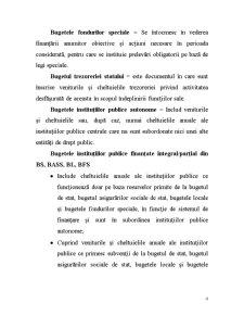 Sisteme Bugetare - Pagina 4