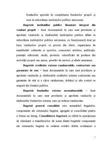 Sisteme Bugetare - Pagina 5