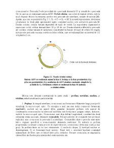 Genetica Ecologică - Pagina 3