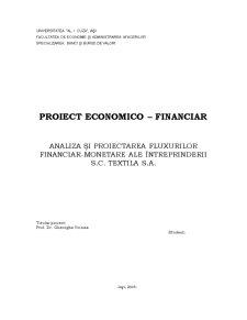 Analiza si Proiectarea Fluxurilor Financiar-Monetare ale Intreprinderii SC Textila SA - Pagina 1