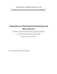 Finanțarea și Creditarea Întreprinderilor Mici și Mijlocii - Pagina 1