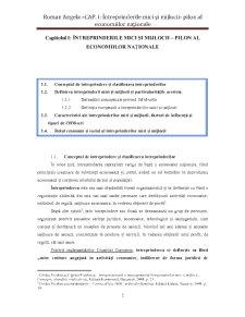 Finanțarea și Creditarea Întreprinderilor Mici și Mijlocii - Pagina 2
