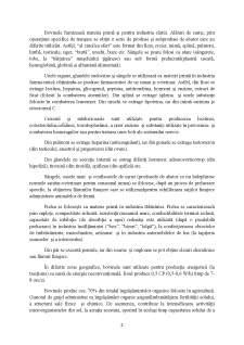 Ferma Vaci de Lapte, Rasa Baltata Romaneasca cu un Efectiv Matca 20 de Capete - Pagina 5