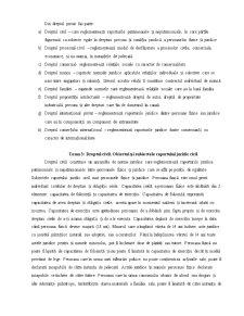 Bazele Statului si Dreptului - Pagina 5