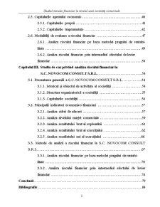 Studiul Riscului Financiar la Nivelul unei Societăți Comerciale - Pagina 2