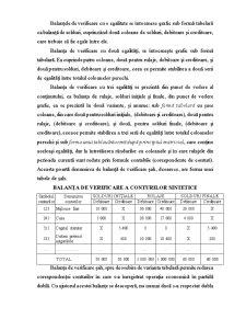 Notiuni Privind Contabilitatea, Functiile si Principiile de Baza ale Acesteia - Pagina 3