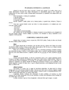Apicultura - Pagina 1