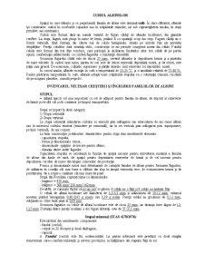 Apicultura - Pagina 2