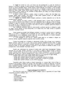Apicultura - Pagina 3