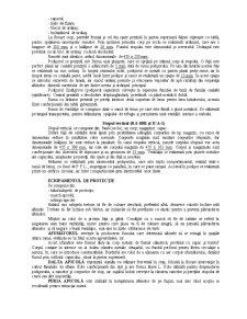 Apicultura - Pagina 4