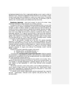 Dreptul Proprietății Intelectuale - Pagina 2