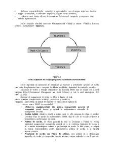 Sistem de Management de Mediu - Pagina 2
