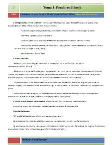 Bazele Activității Bancare - Pagina 5