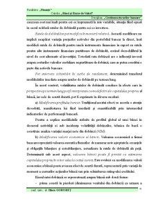 Gestiunea Riscurilor Financiar-Bancare - Pagina 2