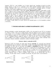 Rolul Acizilor Nucleici în Realizarea Diferitelor Caractere - Pagina 2