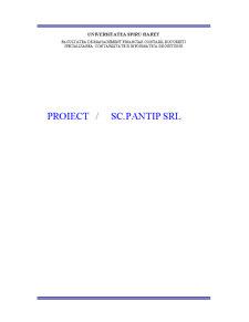 Analiza Situatiei Financiar-patrimoniale la SC Pantip SRL - Pagina 1