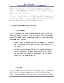Analiza Situatiei Financiar-patrimoniale la SC Pantip SRL - Pagina 5