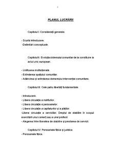 Particularități ale Dreptului Comunitar al Afacerilor - Pagina 3