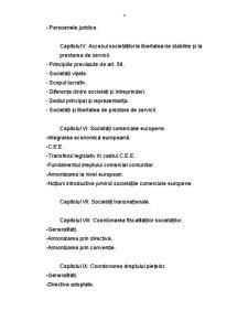 Particularități ale Dreptului Comunitar al Afacerilor - Pagina 4