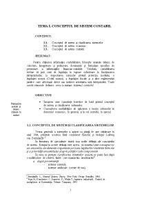 Sisteme Contabile Contemporane - Pagina 3